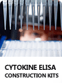 Cytokine ELISA Construction Kits